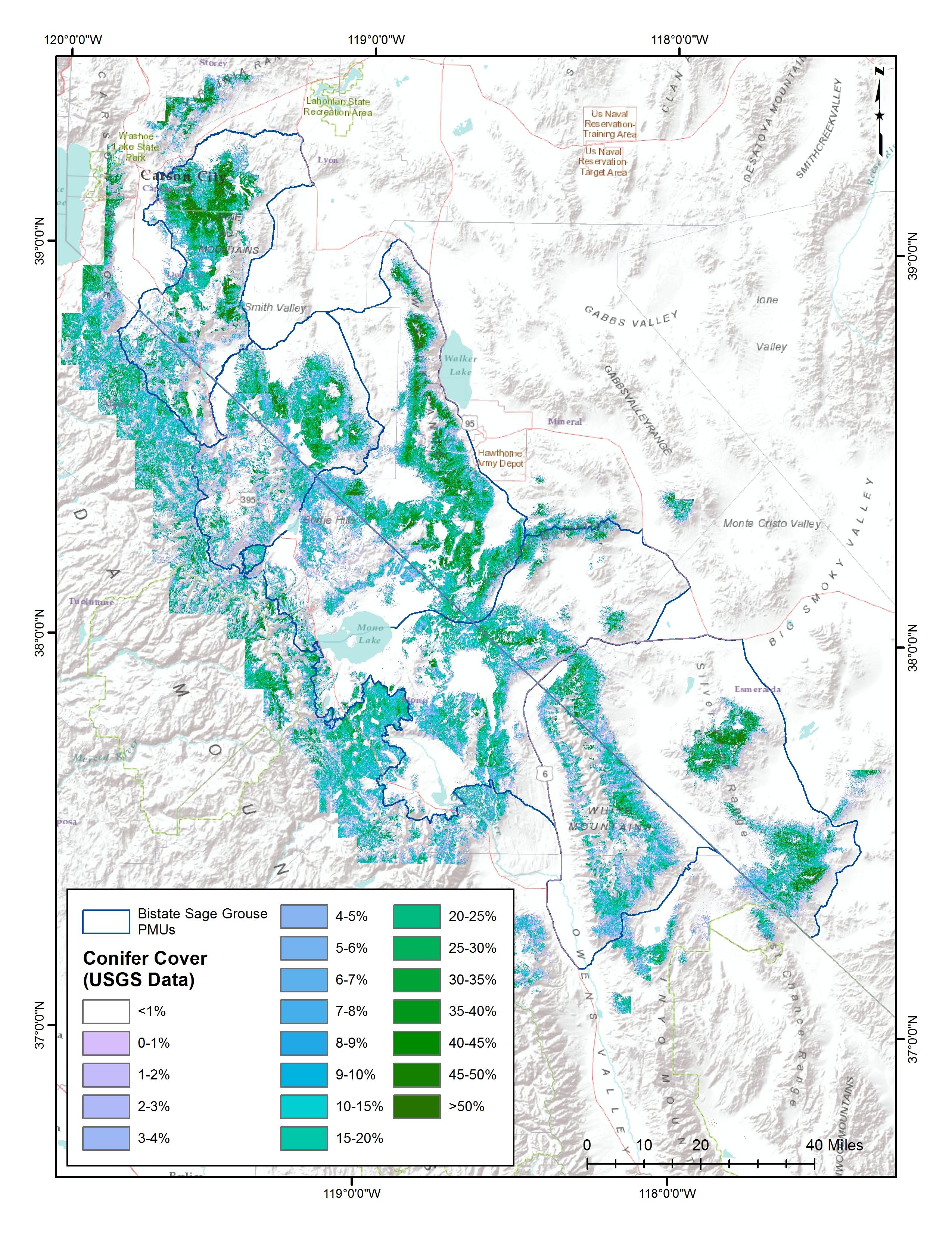 Conifer map