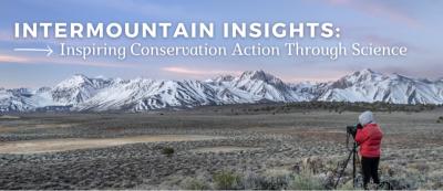 Intermountain Insights